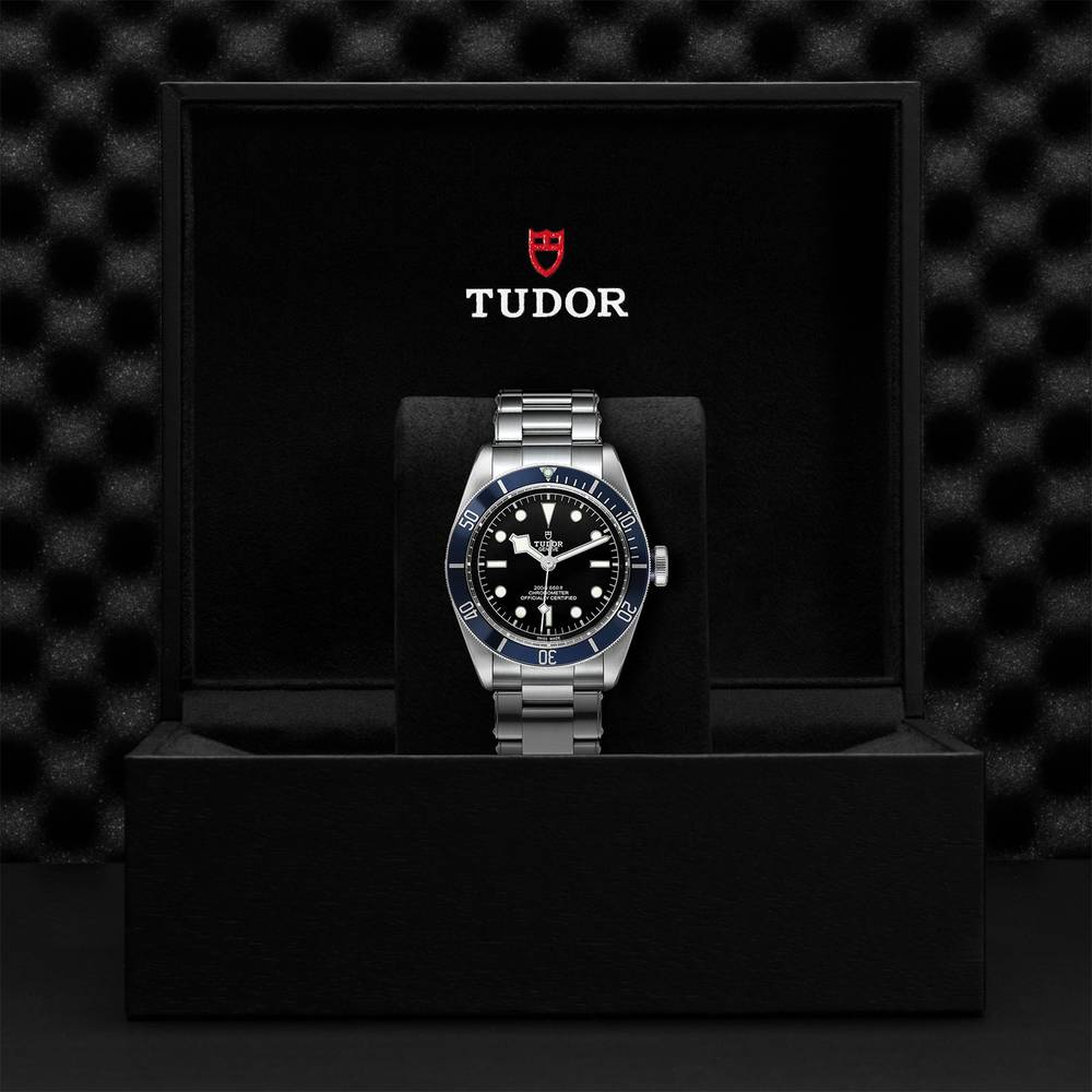 Tudor Black Bay Swiss Dive Stainless Steel Black 41mm Gents