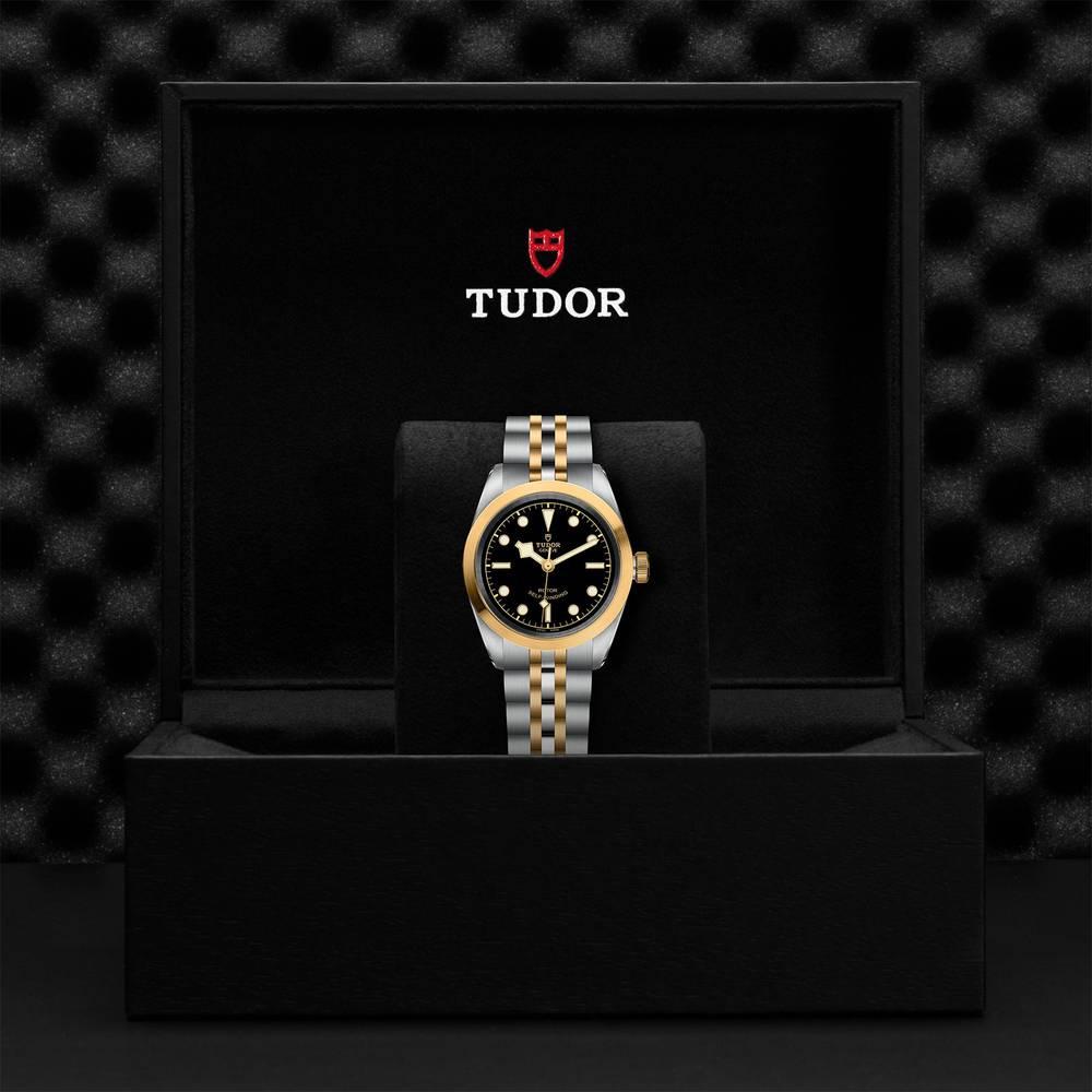 Tudor Black Bay 32 S&G